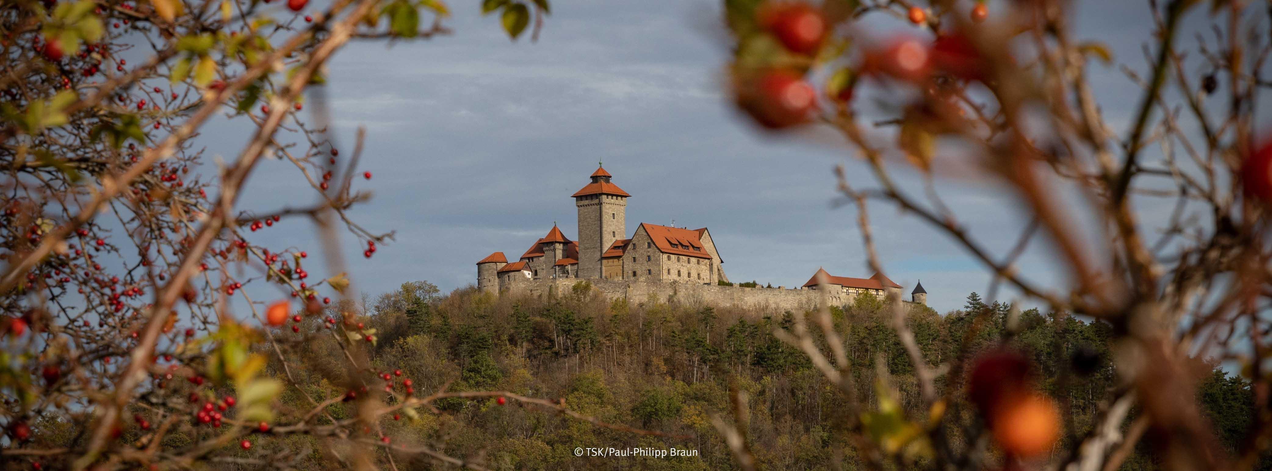 Wachsenburg im Herbst, Hagebutten im Vordergrund