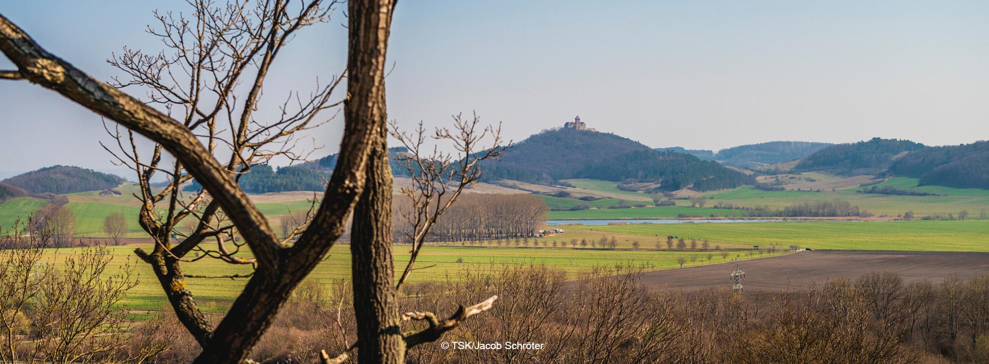 Landschaft im Thüringer Becken, Blick auf Wachsenburg
